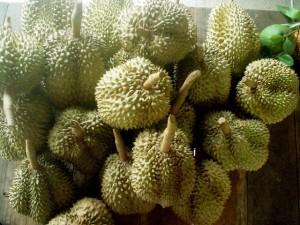 Durian. Autor Ringo Ichigo de Flickr.