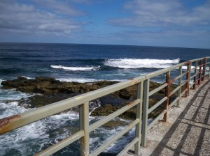 Autor Linux Penguin Tux de http://www.publicdomainpictures.net/view-image.php?image=4747&picture=la-jolla-california